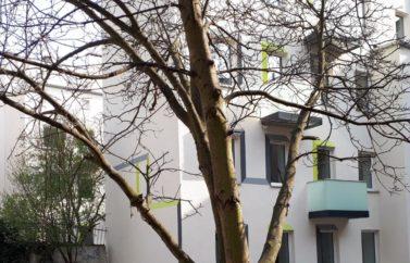 Mieszkanie 3 (3)